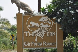 The Fern, lodge Gir