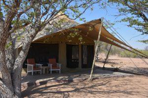safari woestijnloifanten, SRT, Malansrus, damaraland reis, reis Namibie, twijfelfontein