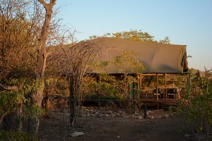 Ongava, Namibie reis, safari Ongava
