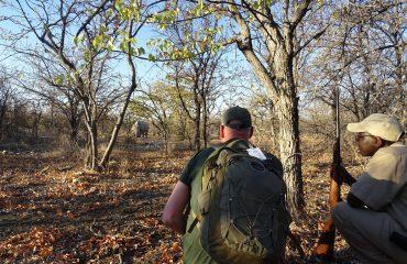 Rhino Tracking Ongava