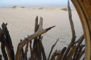 Shipwreck Lodge, reis Skeleton Coast, Namibie safari