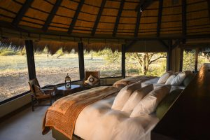 Okonjima Lodge, Luxury Bush Camp, africat foundation