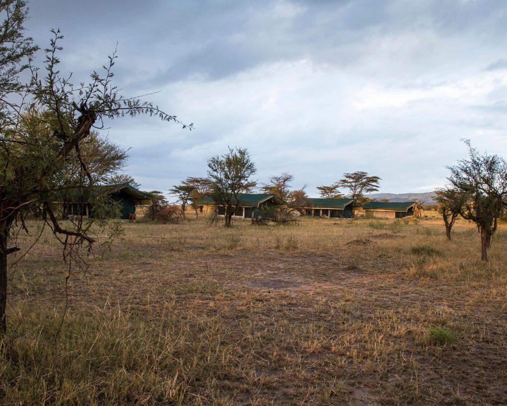 Nasikia Mobile tented camp, migratie safari tanzania, serengeti safari