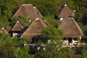 Bwindi Lodge, gorilla trekking, bwindi safari, berggorilla