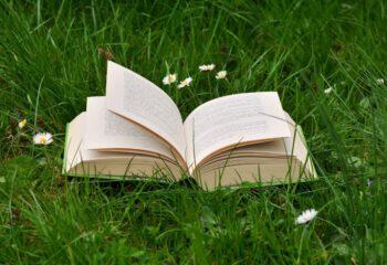 boek op gras