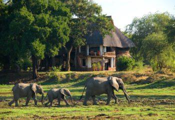 Luangwa House Zambia