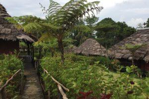Kawarari, Sepik, sepik reis, paradijsvogel reis, PNG, papoea nieuw guinea reis