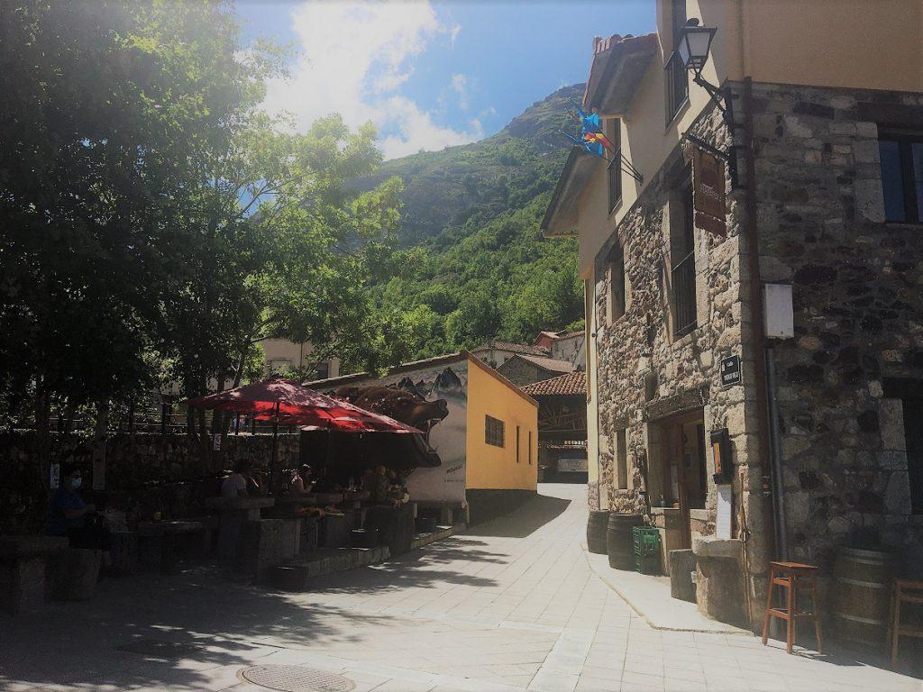 reis Spanje Cantabrisch gebergte, selfdrive Picos de EUropa, berenreis SPanje, wolvenreis spanje safari beer, safari wolf