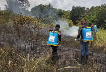 Brandweerbrigade Way Kambas National Park