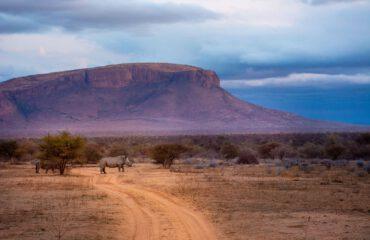 Marataba Landschap @melanievanzyltravel