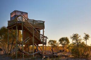 Natural Selection, Botswana reis, safari Okavango, safari Khwai safari, safari Okavango Delta