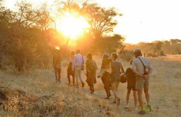 Meno a Kwena Bushmen walk