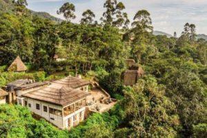 Bwindi Lodge, gorilla trekking, bwindi safari, berggorilla, volcanoes