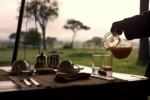 Dunia Camp, Asilia, Serengeti, Safari Tanzania