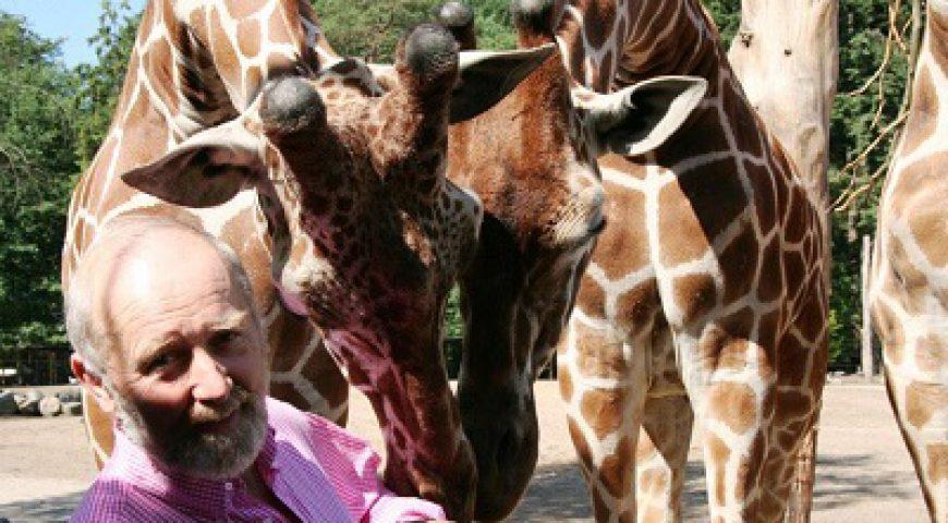 MHEF_giraffe en Hoedemaker - kopie