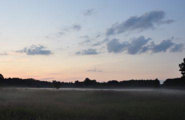 Avondnevel Oder Delta ©All for Nature Travel