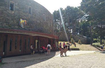 Lobo Iberica Sanctuary Sanabria @AllforNatureTravel
