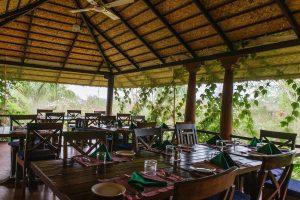 reis zuid india, safari nagahole, safari kabini, safari bandipur, reis zuid india, reis western ghats, reis west ghats, wildlife west ghats, wildlife reis india, natuurreis india, Kerala
