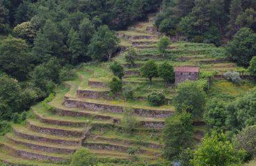 Zomerweides Peneda-Gerês National Park @AllforNatureTravel